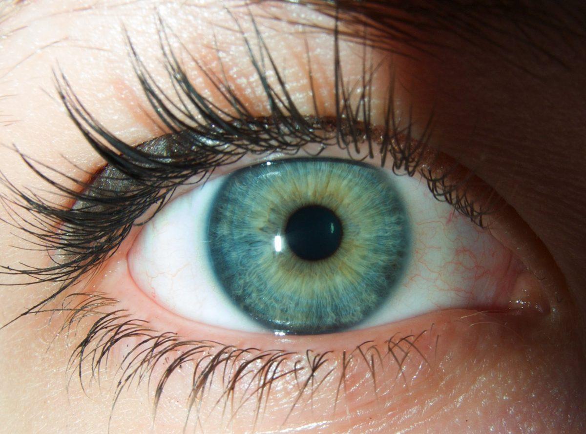 L'iridologia