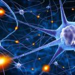 Epilessia cos'è e come riconoscerla
