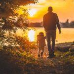 Papà: la figura del padre nella letteratura italiana celebrando la Festa del papà